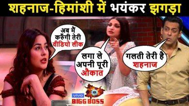 Photo of Bigg Boss 13: Truth Behind Shehnaaz Gill and Himanshi Khurana's Cat Fight