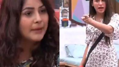 Photo of Mahira Sharma Warned Shehnaaz About Telling Her Behind Siddharth's Back Act to Shukla