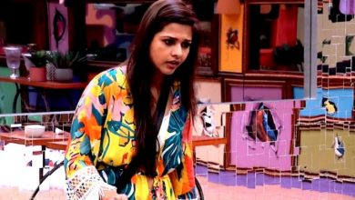Photo of Bigg Boss 13 Dalljiet Kaur's Eliminations
