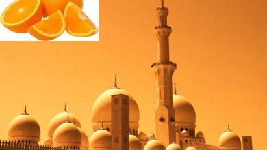 Photo of City Exports its First Season Oranges to Dubai