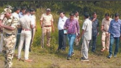 Photo of Tiger in Mihan Spotted again – Forest dept to chalk a strategy
